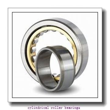 FAG NJ2319-E-TVP2-C3  Cylindrical Roller Bearings