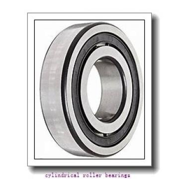 55 mm x 120 mm x 43 mm  FAG NJ2311-E-TVP2  Cylindrical Roller Bearings