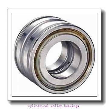FAG NJ2311-E-M1-C3  Cylindrical Roller Bearings