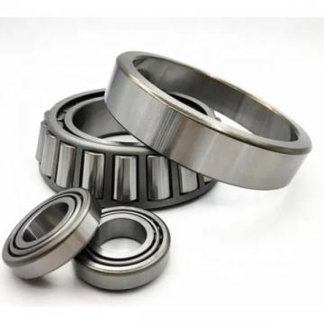 High Quality Nu309, Nj309, Nup309, N309 Ecml/C3 Bearing for Machine Tool Spindle